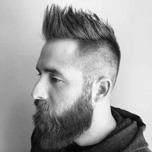 Cresta-larga-con-barba